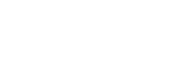Persuit of Beauty