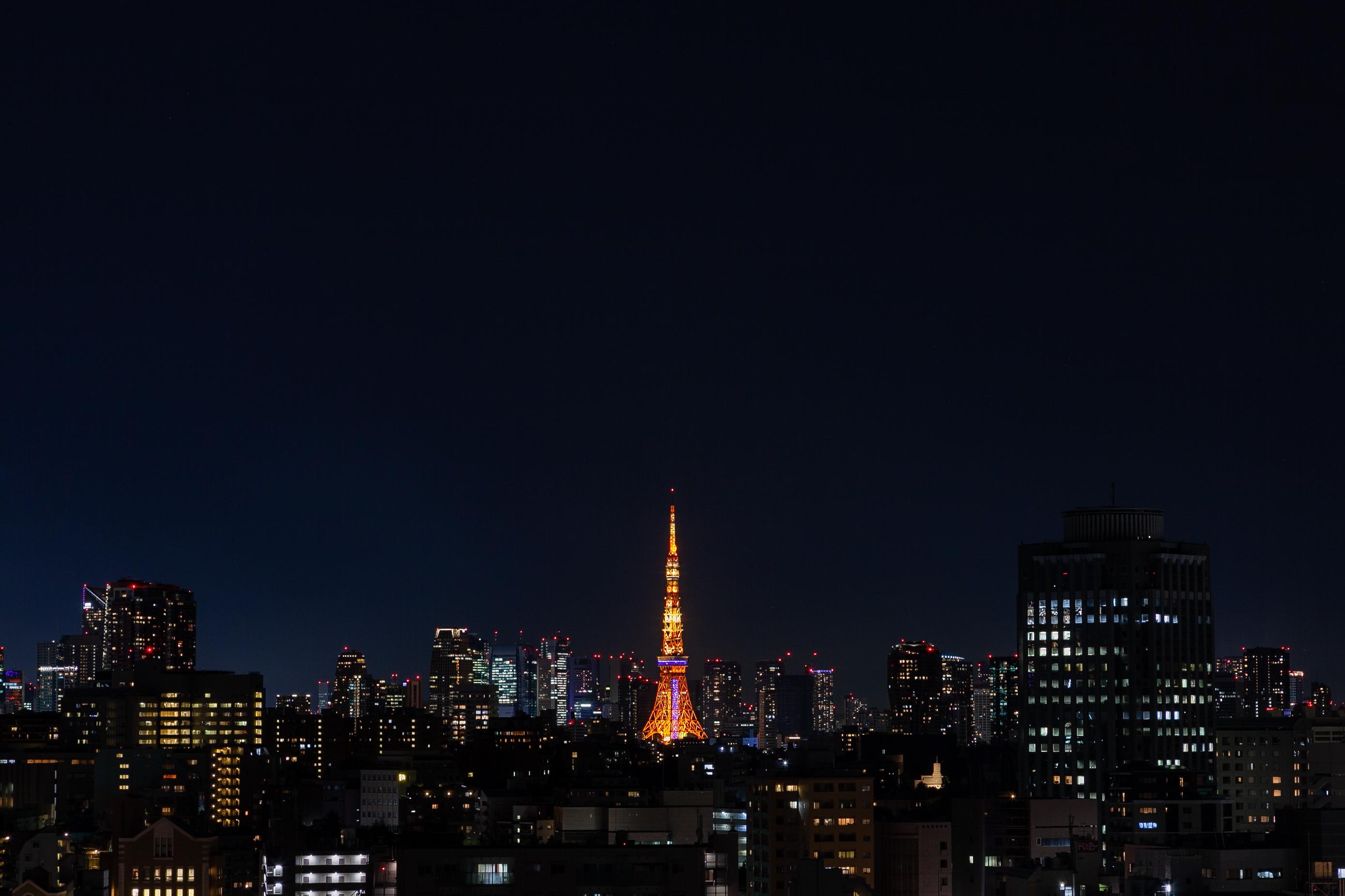 東京タワー/ミッドナイトブルー